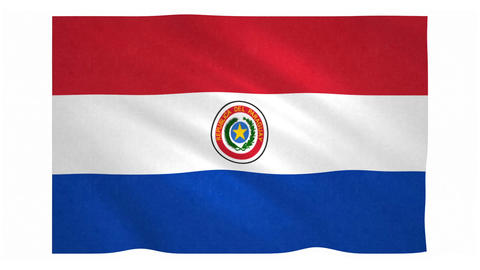 Flag of Paraguay waving on white background Animation