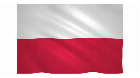 Flag of Poland waving on white background Animation