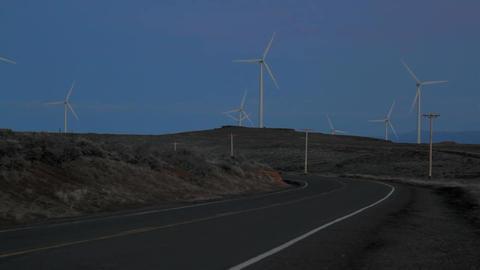 Windfarm in the evening ビデオ