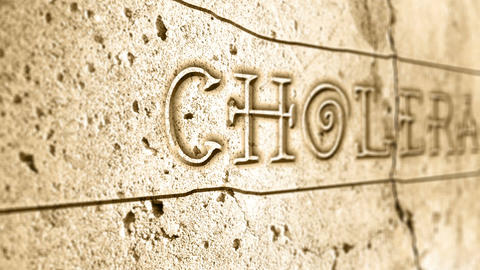 word cholera on wall with egyptian alphabet Animation