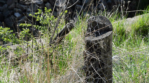 Old wooden fence with barbed wire beaten by the harsh winter wind Footage