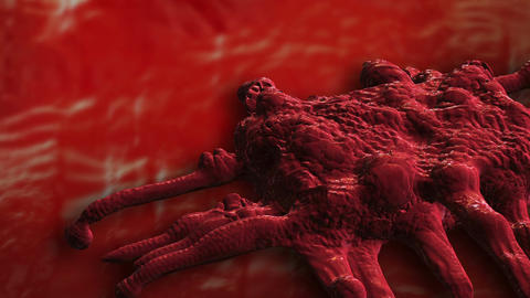 pan and zoom camera - Close image of bunch cancer cells Animation