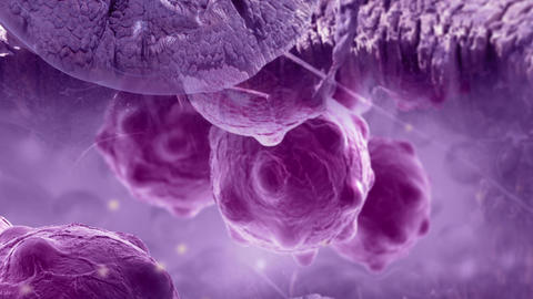 pan and zoom camera - cancer cells with high details Animation