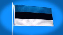 the national flag of Estonia CG動画