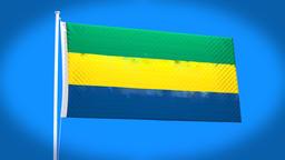 the national flag of Gabon CG動画