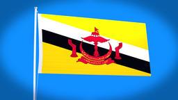 the national flag of Brunei CG動画