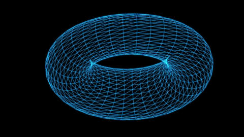 Wire frame model of torus rotating Animation