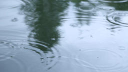 Raindrops On Water Surface Footage