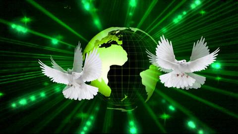 GREEN WORLD&PEACE Footage
