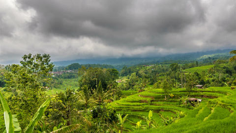 Rice terrace and moody clouds time lapse Footage