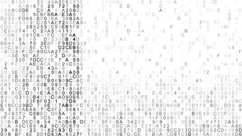 Hex digital data scan IT concept loopable animation Animation
