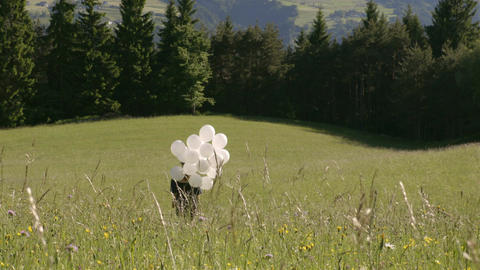 Girl walks with balloons in a field Footage