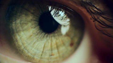 Eye Iris 4 Filmmaterial