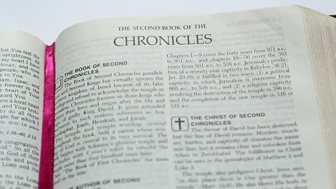 The Second Book Of The Chronicles Live Action