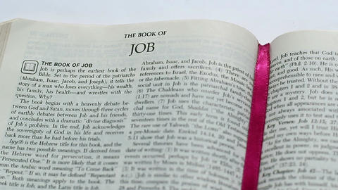 The Book Of Job Footage