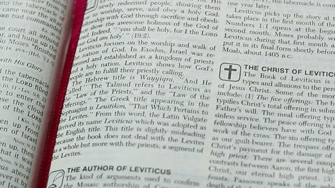 The Book Of Leviticus Footage