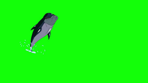 Navy blue dolphin jump out of the water Animation