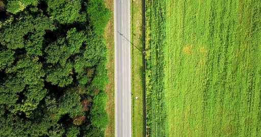 Aerial Drone View Of Moving Cars On Country Road With Forest Footage