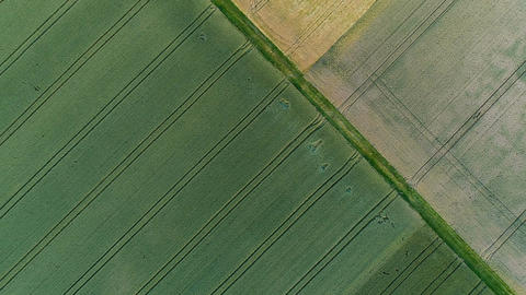 Aerial view of fields Footage