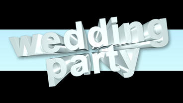 Wedding Party stock footage