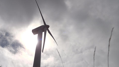Wind turbine. The sky is covered with fluffy white clouds. Blades of grass movin Footage