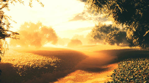 Amazing Natural Wonderland in the Sunset Sunrise 10 Animation