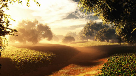 Amazing Natural Wonderland in the Sunset Sunrise 6 Animation