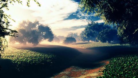 Amazing Natural Wonderland in the Sunset Sunrise 7 Animation