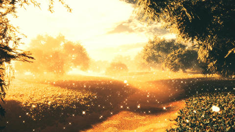 Amazing Natural Wonderland in the Sunset Sunrise with Fireflies 10 Animation