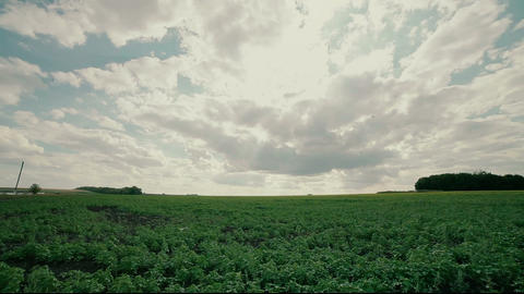 HDR Timelapse On Agriculture Field stock footage