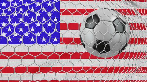 Ball and USA flag Animation