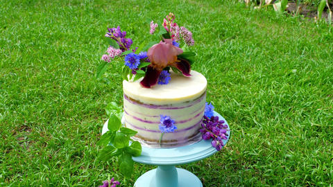 Festive cake with flowers Live Action