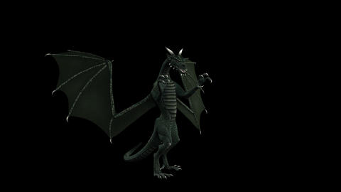 Fantasy Dragon - Side View - Transparent Loop CG動画素材
