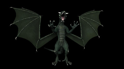 Fantasy Dragon - Front View - Transparent Loop CG動画素材