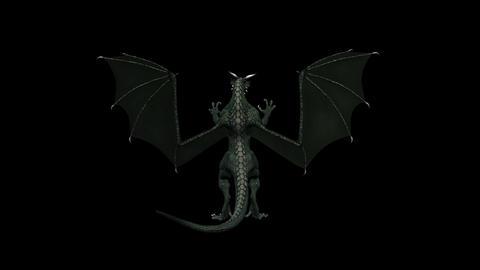 Fantasy Dragon - Back View - Transparent Loop Animation