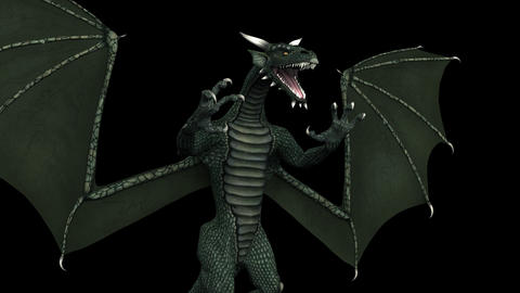 Fantasy Dragon - Angle Close-up - Transparent Loop CG動画素材