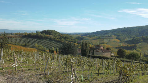 Vineyards on the rolling hills of Tuscany, Italy Footage