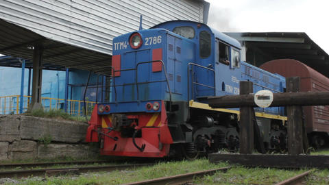 Old Blue Locomotive Transports Wagons with Cargo Footage