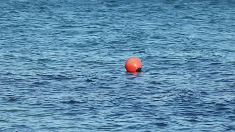 A buoy on waves Footage