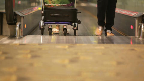 Travelers at Singapore Airport international terminal walking with trolleys and  Footage