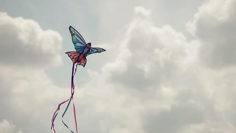 Beautiful kite flying in the blue sky Footage