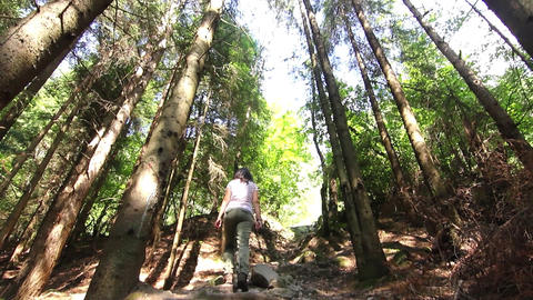 Young girl who is hiking, walking through the green forest early summer 20 Footage