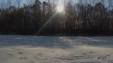 The sun shines on the sandy beach through the bare trees Footage