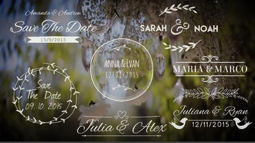 15 Wedding Titles After Effects Template