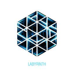 Hexagon volume labyrinth. Vector abstract logo Vektor
