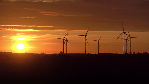Video of windmills at the sunset in 4K Image
