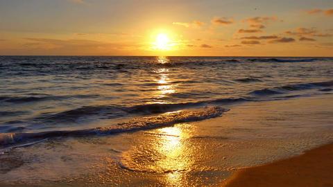 Beautiful sunset in California in 4K ビデオ
