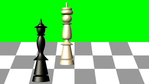 3d chess scene, black queen gives the mat to the white king, animation on green  Animation