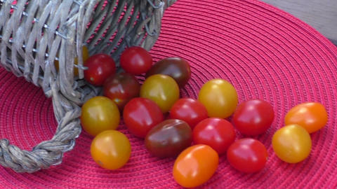 Various of colorful cherry tomatoes in a small basket on an red surface Footage