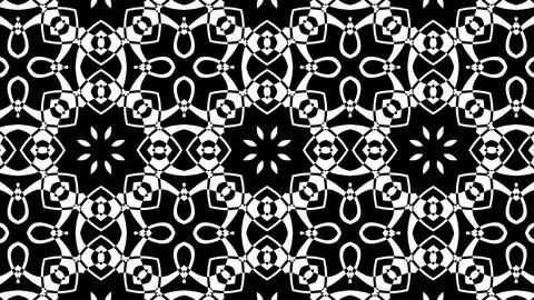 Black And White BW Intricate Kaleidoscope Pattern Motion Background Loop 1 Animation
